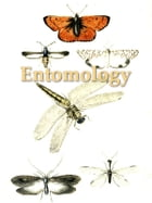 An Introduction to Entomology: Or Elements of the Natural History of Insects, Fifth Edition, Volume 3 (of 4) by William Kirby