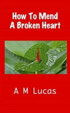 How To Mend A Broken Heart by A M Lucas