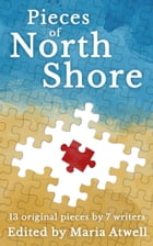 Pieces of North Shore: 13 Pieces, 7 Writers