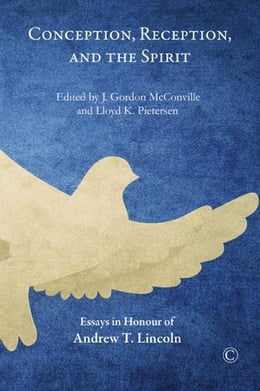 Book Conception, Reception, and the Spirit: Essays in Honour of Andrew T. Lincoln by McConville, J. Gordon