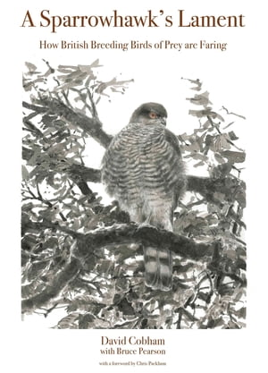 A Sparrowhawk's Lament How British Breeding Birds of Prey Are Faring