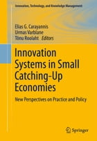 Innovation Systems in Small Catching-Up Economies: New Perspectives on Practice and Policy