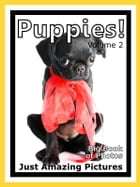 Just Puppy Photos! Big Book of Photographs & Pictures of Baby Dogs & Dog Puppies, Vol. 2 by Big Book of Photos
