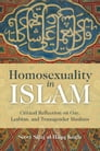 Homosexuality in Islam Cover Image