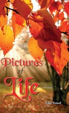 Pictures Of Life by Faiz Yusuf