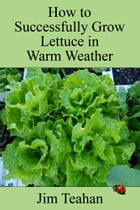How to Successfully Grow Lettuce in Warm Weather by Jim Teahan