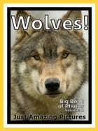 Just Wolf Photos! Big Book of Photographs & Pictures of Wolves, Vol. 1 by Big Book of Photos