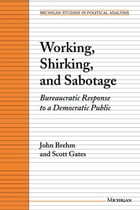 Working, Shirking, and Sabotage: Bureaucratic Response to a Democratic Public