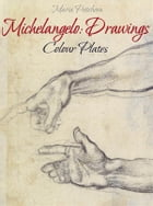 Michelangelo: Drawings Colour Plates by Maria Peitcheva