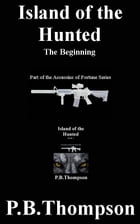 The Beginning by P.B.Thompson