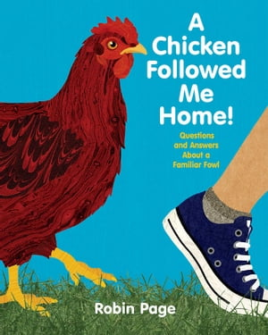 A Chicken Followed Me Home! Questions and Answers about a Familiar Fowl (With Audio Recording)