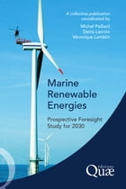 Marine Renewable Energies: Prospective Foresight Study for 2030 by Michel Paillard