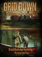 Grid Down: The New Reality by Bruce Buckshot Hemming