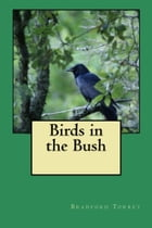 Birds in the Bush (Illustrated) by Bradford Torrey