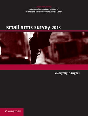 Small Arms Survey 2013 Everyday Dangers