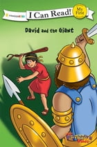 The Beginner's Bible David and the Giant by Various Authors