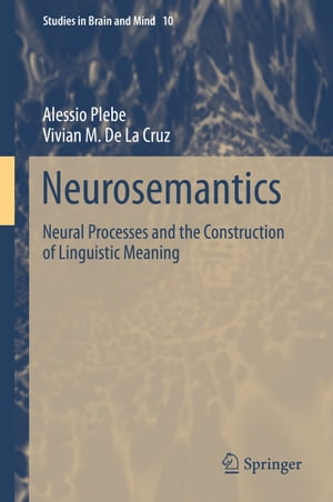 Neurosemantics: Neural Processes and the Construction of Linguistic Meaning by Alessio Plebe