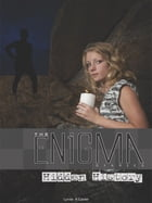 The Enigma Diaries: Hidden History by Lynda A Calder
