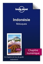 Indonésie - Moluques by Lonely Planet