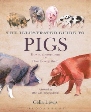 The Illustrated Guide to Pigs How To Choose Them - How To Keep Them