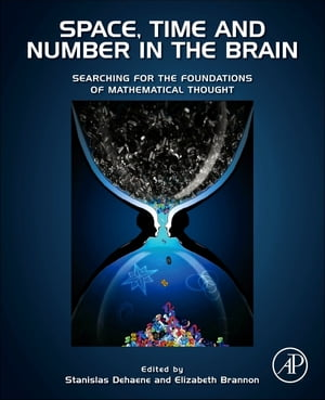 Space,  Time and Number in the Brain Searching for the Foundations of Mathematical Thought