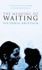 The Meaning of Waiting by Victoria Brittain