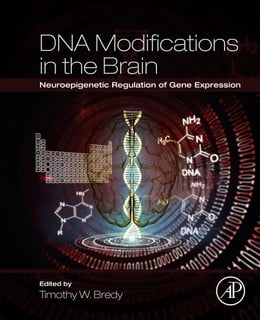 Book DNA Modifications in the Brain: Neuroepigenetic Regulation of Gene Expression by Timothy W Bredy