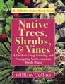 Native Trees, Shrubs, and Vines Cover Image