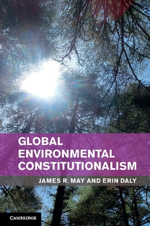 Global Environmental Constitutionalism