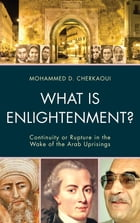What Is Enlightenment?: Continuity or Rupture in the Wake of the Arab Uprisings