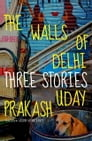 The Walls of Delhi Cover Image