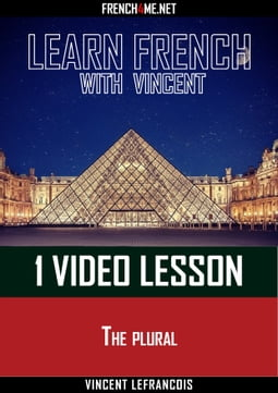 Learn French - 1 video lesson at a time - Lequel