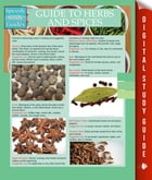 Guide To Herbs And Spices (Speedy Study Guides) by Speedy Publishing