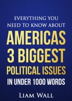 Everything You Need To Know About America's 3 Biggest Political Issues in Under 1000 Words by Liam Wall