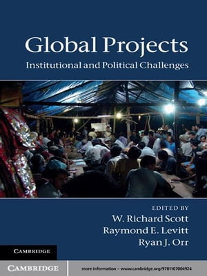 Global Projects Institutional and Political Challenges