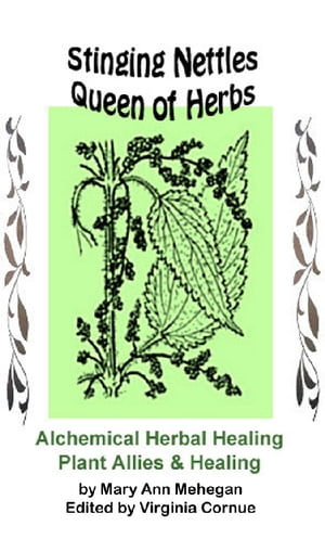 Stinging Nettles - Queen of Herbs: Alchemical Herbal Healing of Plant Allies