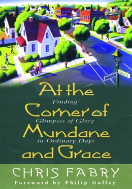 Book At the Corner of Mundane and Grace: Finding Glimpses of Glory in Ordinary Days by Christopher H. Fabry