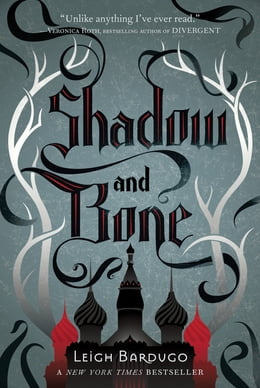 Book Shadow and Bone by Leigh Bardugo