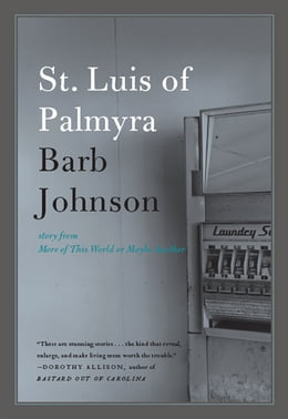 Book St. Luis of Palmyra by Barb Johnson