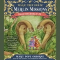 Merlin Missions Collection: Books 17-24 110f1a54-955d-47fd-a163-81ccc3dd87a2