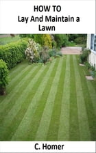 How to lay and maintain a lawn