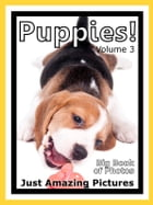 Just Puppy Photos! Big Book of Photographs & Pictures of Baby Dogs & Dog Puppies, Vol. 3 by Big Book of Photos