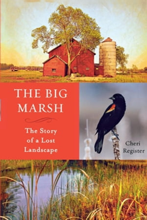 The Big Marsh The Story of a Lost Landscape