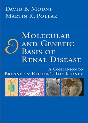 Molecular and Genetic Basis of Renal Disease A Companion to Brenner and Rector's The Kidney