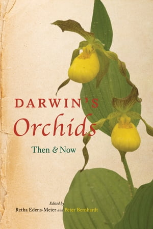 Darwin's Orchids Then and Now