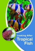 Looking After Tropical Fish by Kevin Wilson
