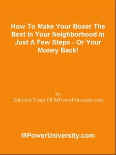 How To Make Your Boxer The Best In Your Neighborhood In Just A Few Steps - Or Your Money Back!