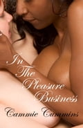 In the Pleasure Business fda0a0a1-fc26-440b-8591-7987c73179d3