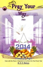 Pray Your Way into 2014 by Dr. D. K. Olukoya