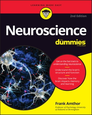 Neuroscience For Dummies by Frank Amthor
